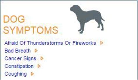 symptom checker for dogs best illness symptom checker top tips
