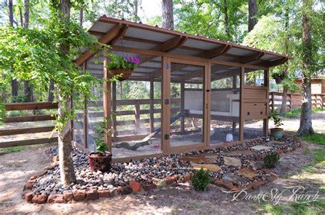 chicken ranch backyard chickens community