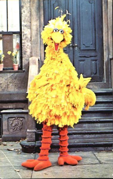 big bird  sesame street modern   present