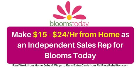 independent cabinet sales rep sales from home sales from home 15 24 hour