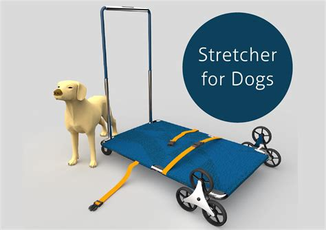dogs for dogs stretcher for dogs by horig issuu