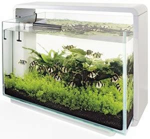 Aquarium L 25 Liter nano aquarium kaufen top 7 nano aquarien im vergleich uvm