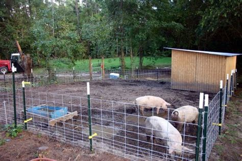 pen panels how to make a fence with hog panels ehow invitations ideas