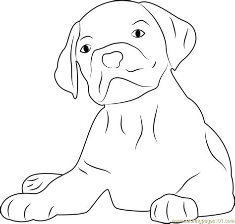dog face coloring pages coloring pages