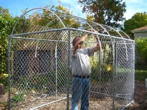 Inside Greenhouse Ideas building a greenhouse or cold frame out of a dog kennel
