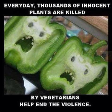 Funny Everyday Memes - everyday thousands of innocent plants are killed jokes