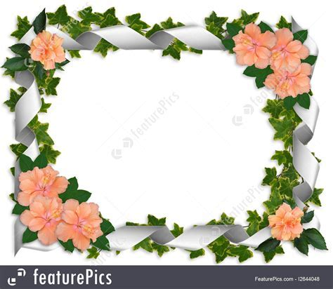 Templates: Ivy Ribbons And Hibiscus Border   Stock