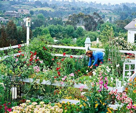 67 Best Ideas About Gardening Southern California On Vegetable Gardening In Southern California