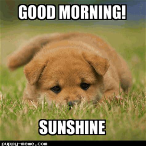 Cute Good Morning Meme - 1428759425024