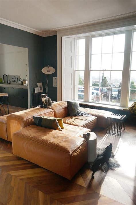 dog  wolf  grey walls tan leather  grey
