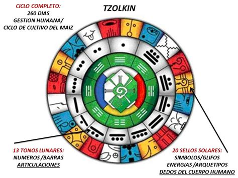 Calendario T Zolkin Estudio Y Practica Diaria Tzolkin Paso A Paso 1