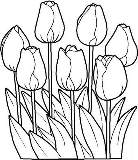 imagenes para dibujar un cuadro flores para dibujar