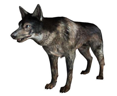 dogs wiki fallout wiki fandom powered by wikia