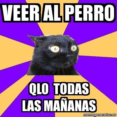 Anxiety Cat Meme Generator - meme anxiety cat veer al perro qlo todas las ma 241 anas
