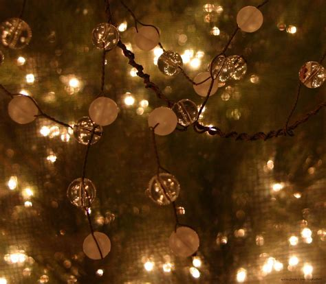christmas lights christmas photo 9361816 fanpop