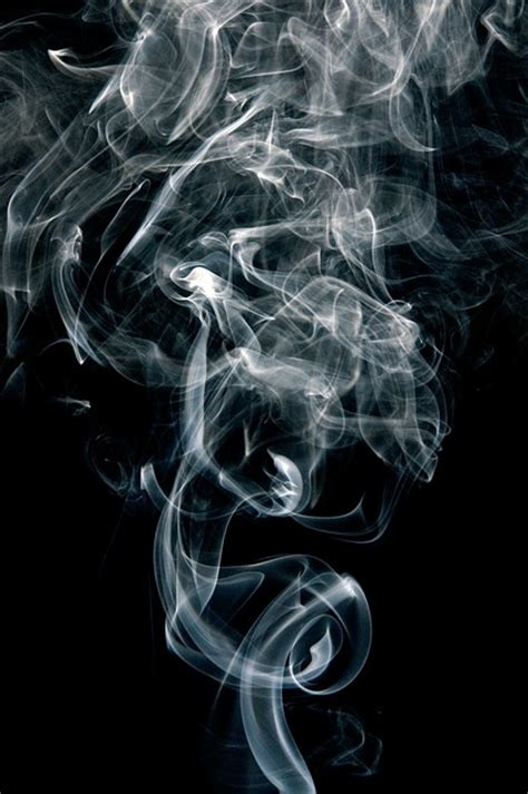 white facing weed free photo smoke fumes black white curve free image
