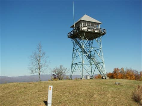 Bald Knob Topix by Southern Highlands Up Panther Top