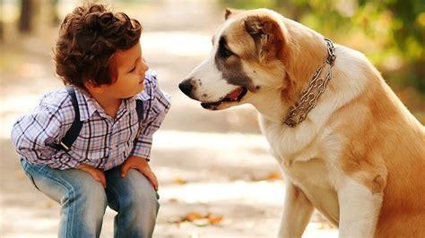 puppies care 38 brilliant care hacks