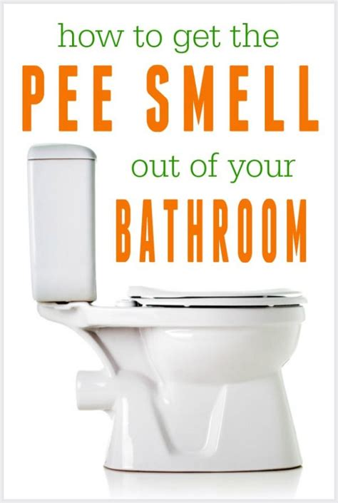 how to get urine smell out of bathroom best 25 pee smell ideas on pinterest cleaning cat urine