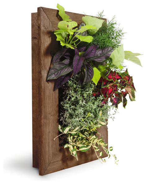 grovert wall planter ghostwood rustic indoor pots and
