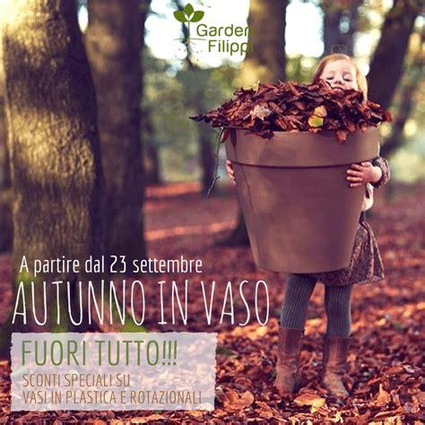 tutto vasi autunno in vaso fuori tutto su vasi da interno ed esterno