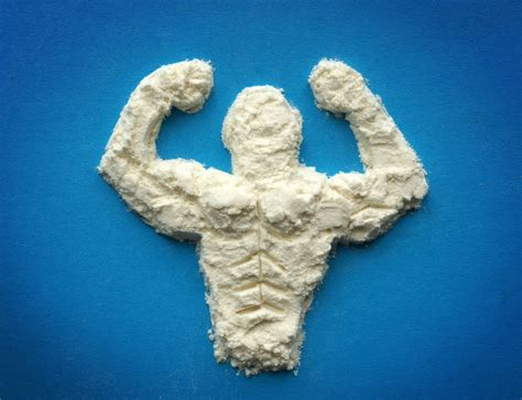 z build supplement a trainer s guide to protein supplements fitness