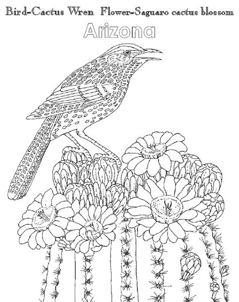 free arizona state flower coloring pages