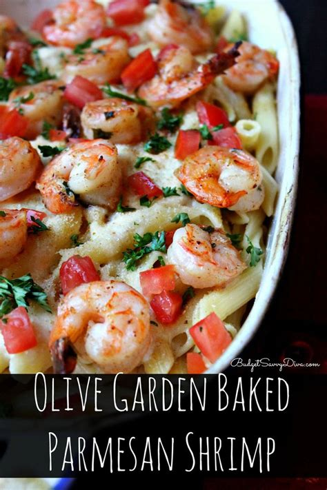 best italian olive best 25 olive garden salad ideas on olive