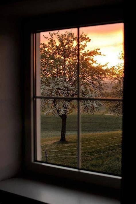 peaceful window view   sunrise