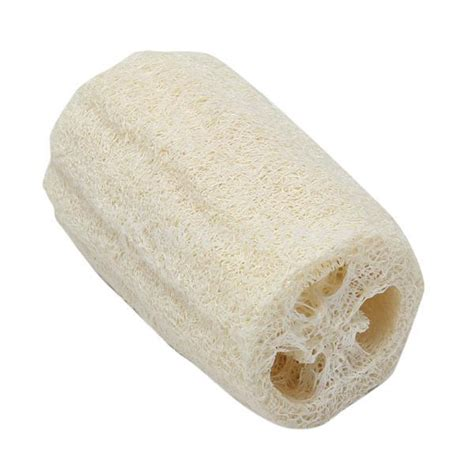 Shower Sponge Thing by Image Gallery Shower Sponge