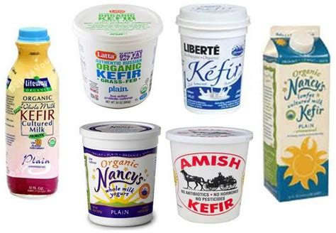 dogs and yogurt ottawa valley whisperer dairy products cheese kefir yogurt are for dogs