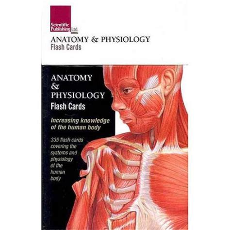 printable flash cards anatomy and physiology anatomy physiology flash cards walmart com