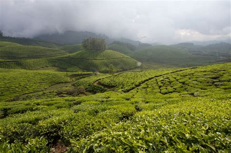 western ghats india s western ghat s awarded unesco world heritage