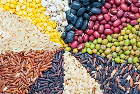 7 protein foods 7 high protein indian vegetarian foods healthifyme