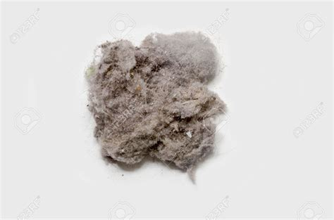 A In The Dust dust is everywhere where does dust come from dust