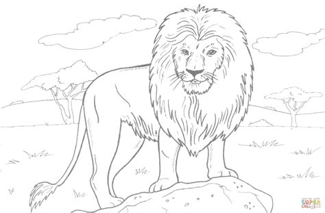 free coloring pages of wild animals african lion coloring page free printable coloring pages