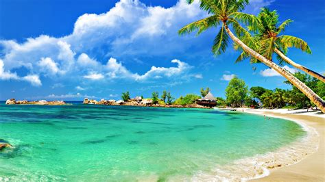 pin beautiful tropical background seascape 1920x1080 509k tropical pictures beach tropical wallpaper wallpapers