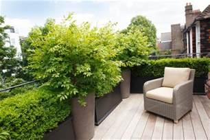 terrasse pflanzen dachterrasse gestalten 37 ideen f 252 r pflanzen und sichtschutz