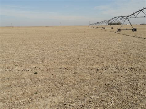 section 8 adams county hoffmann adams co land auction 200 acres sold tract 1