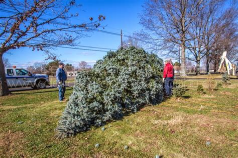 christmas traditions in bordentown city nj