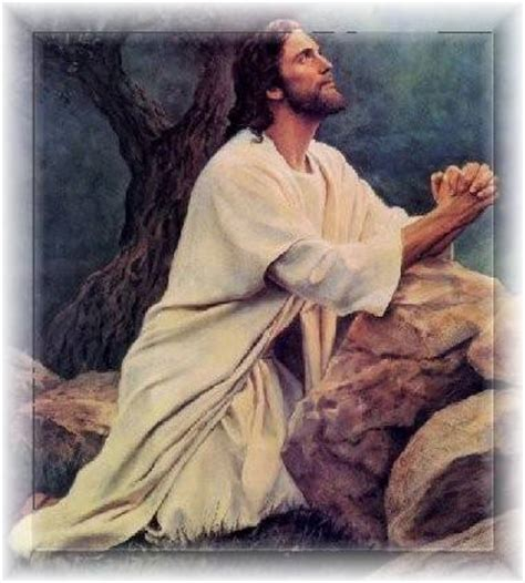nel giardino degli angeli preghiere nel giardino degli angeli preghiere per ogni occasione