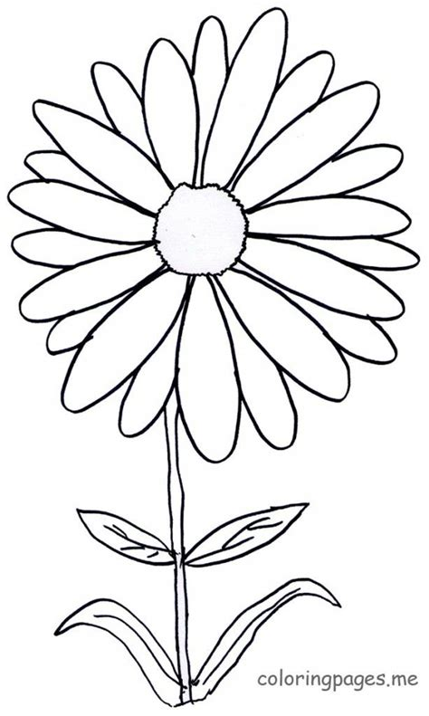 daisy flower coloring page az coloring pages