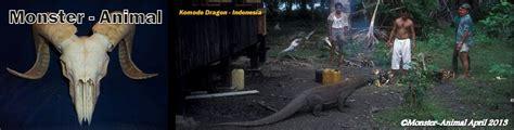 animal 10 hewan modern terbesar di dunia