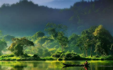 Nature Indonesia nature landscape mist forest river mountain