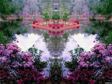 beautiful garden wallpapers hd desktop wallpaper collections