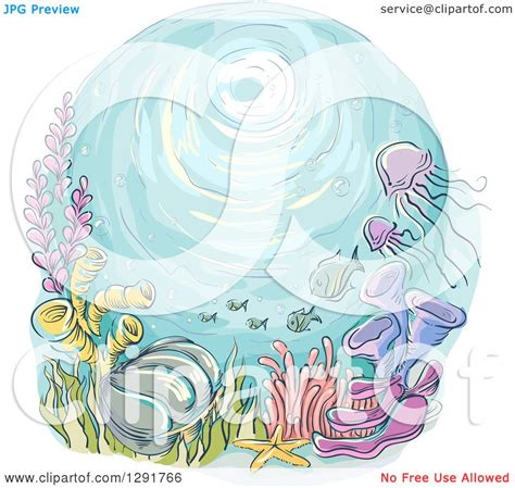 Clipart Of A Sketched Reef by Clipart Of A Sketched Oval Of A Reef Jellyfish And