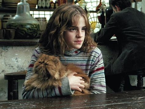 Harry Potter Hermione Granger Real Name by The Secret Meanings The Harry Potter Character