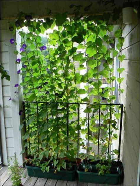 sichtschutz f 252 r terrasse und balkon drau 223 en versteckt sitzen - Sichtschutz Selbst Gestalten