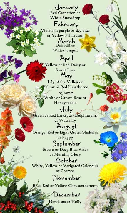 birth month flowers ideas for sleeve on pinterest flower meanings trash