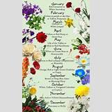 January Flower Of The Month Tattoo | 432 x 720 jpeg 63kB